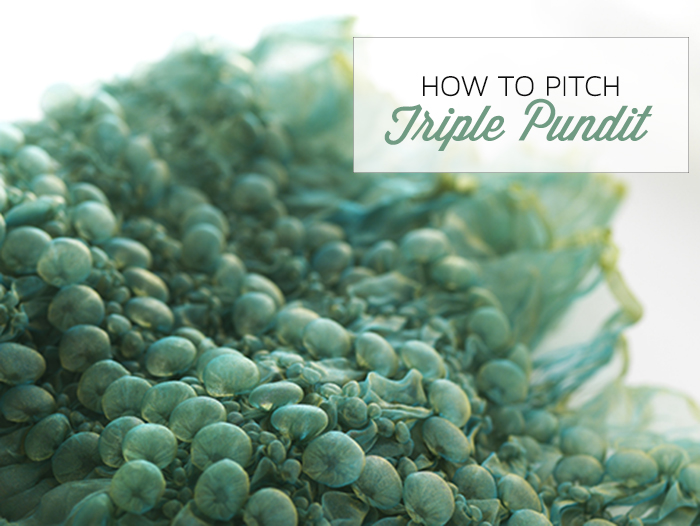 How to Pitch B2B Pub Triple Pundit