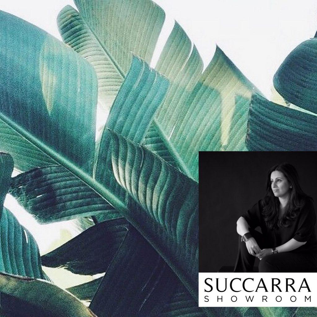 succara showroom